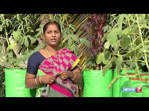 How to prepare homemade Pesticide for organic vegetables for your garden | Poovali | News7 Tamil