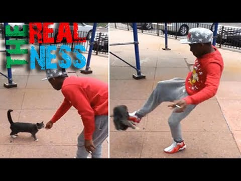 Cat Kicking Creep Arrested After Video Goes Viral