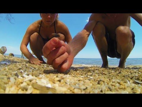 Finding Shark Teeth Chesapeake