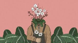 leavv - Mind Garden [full album]