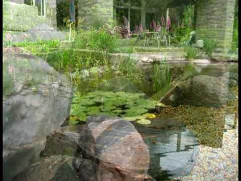 Natural Swimming Pool - King City, ON