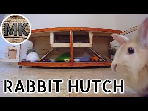 Indoor rabbit hutch