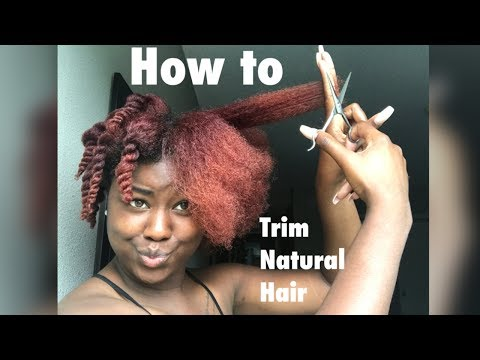 How To | Trim Natural Hair Yourself (2 Ways)