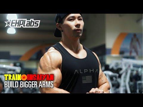 BUILD BIGGER ARMS! | FOREARM STRENGTH | Train Insaiyan with Gokuflex