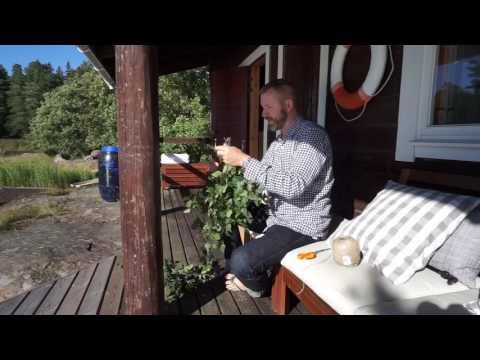 Hot Stuff Sauna Guide / Finland Travel Vlog #6 / The Way We Saw It