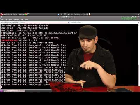 HakTip - Bash Basics: Ping, Date and While