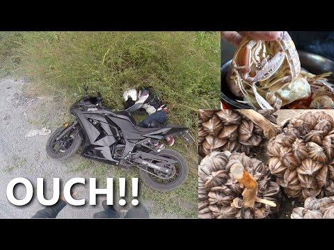 Vietnam Motorcycle Crash, Water Coconuts, and Mantis Shrimps - CAN GIO