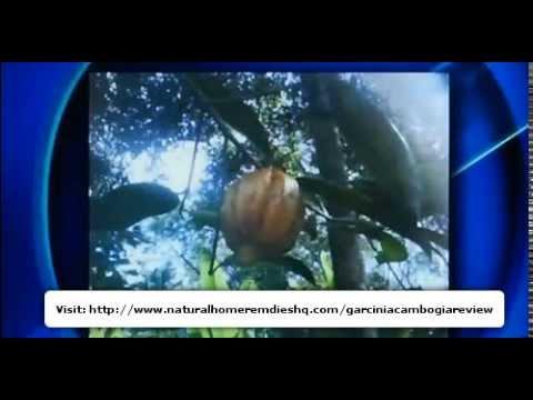 Where to Buy Garcinia Cambogia?