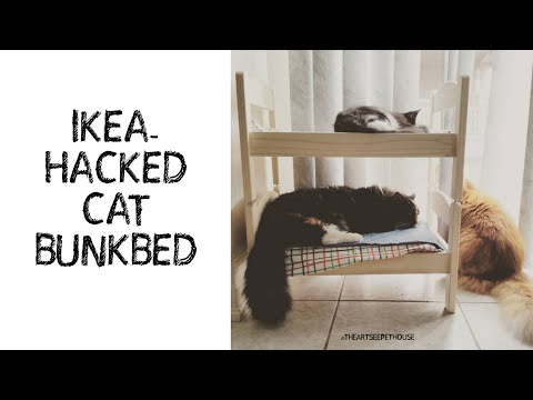 Cute IKEA-Hacked Bunk Bed for CATS