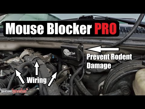Prevent Mouse/ Rodent Damage to car wiring (Mouse Blocker Pro)