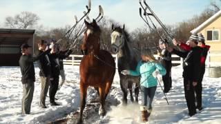 Game On! Minnesota Presents Stillwater Ponies: Wedding Crashers