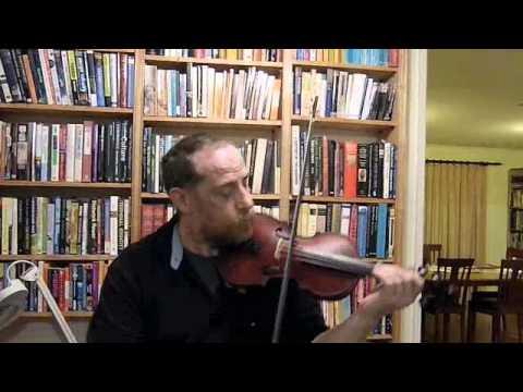 Garini violin