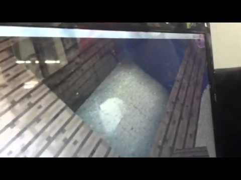 Ocelot as a pet! Minecraft PC creative