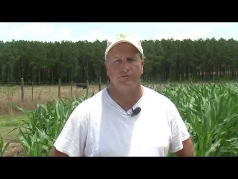 Profile in soil health: Kirk Brock
