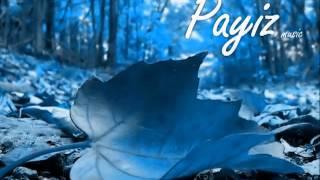 Payiz Music