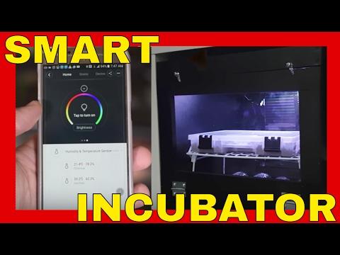 DIY Smart Reptile Incubator