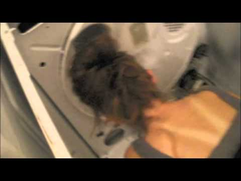 How to Change Dryer Belt on A Whirlpool Dryer