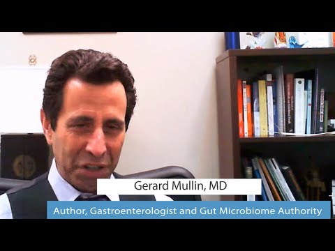 Gut Bacteria Burn Fat, Thrive on Real Food - Gerard Mullin, MD