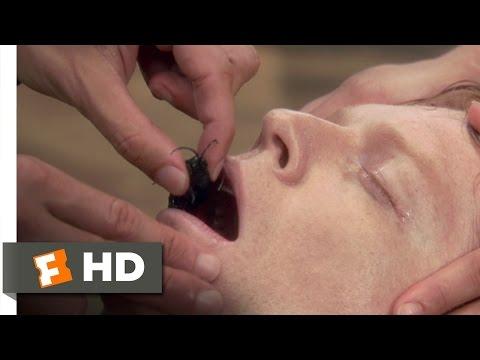 Anaconda (3/8) Movie CLIP - The Deadly Wasp (1997) HD