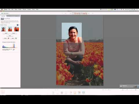 Resizing images using Picasa