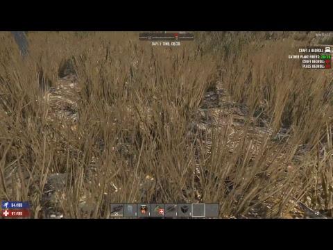 Noypi Gaming Live Stream