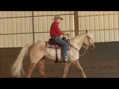 Counter-bending Your Horse for Shoulder Control