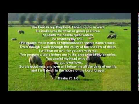 Reading the Psalm 23 .
