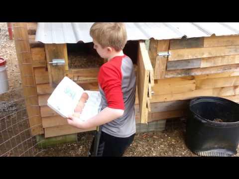 DIY Best Nest Box on the Pallet Chicken Coop