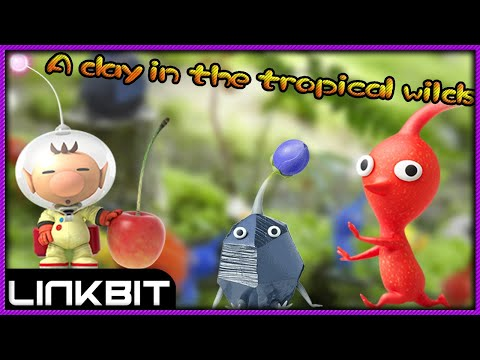 A day in the tropical wild!