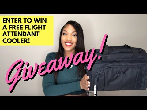 FREE GIVEAWAY!!! FLIGHT ATTENDANT LUNCH BAG | eBAGS REVIEW [GIVEAWAY CLOSED]