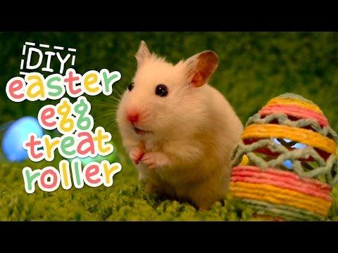 🥚 Easter Egg Treat Rollers | HAMSTER DIY 🥚