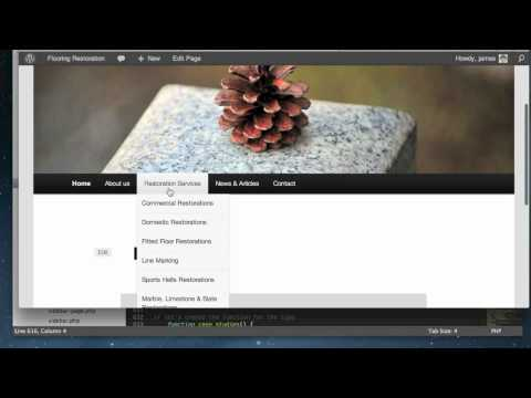 Wordpress CMS/Custom Menus Tutorial