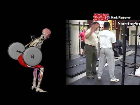 Muscle&Motion and Mark Rippetoe - How to Low Bar Squat
