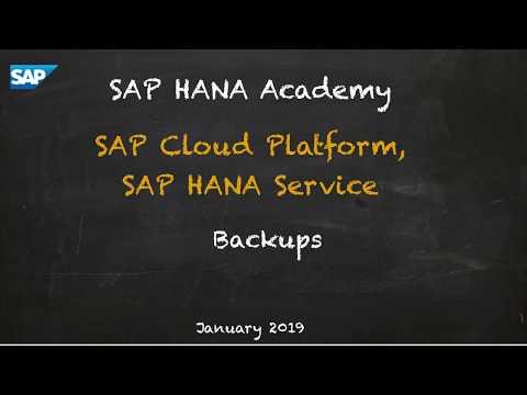 [2.0 SPS 04] SAP HANA Service (CF): Administration, Backup and Recovery - SAP HANA Academy