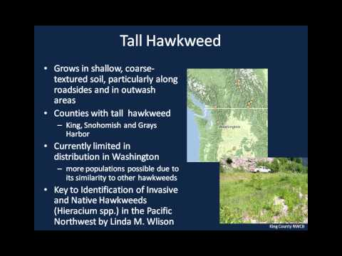 Updates to Washington State Noxious Weeds Laws and the 2013 Noxious Weed List
