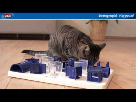 Cats Playground - Keep Cats Occupied!