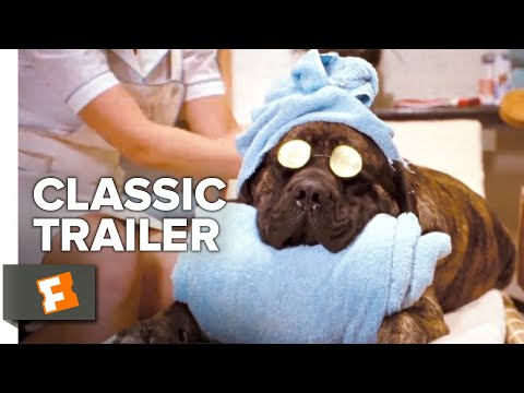 Hotel for Dogs (2009) Trailer #1 | Movieclips Classic Trailers