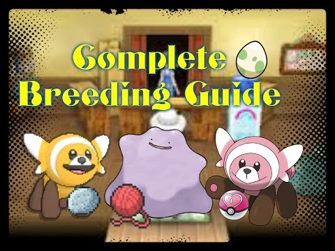 How to Competitively Breed, Obtain Egg Moves, and Shiny Hunt! Pokemon Sun and Moon Breeding Guide