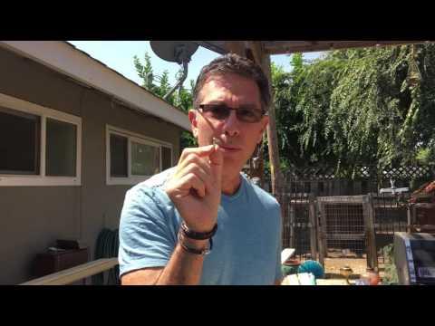 How to build a Sliding Barn door