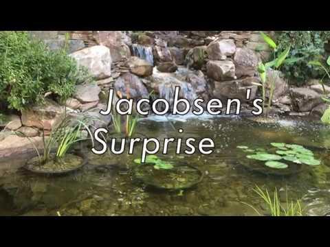 Jacobsen's Surprise