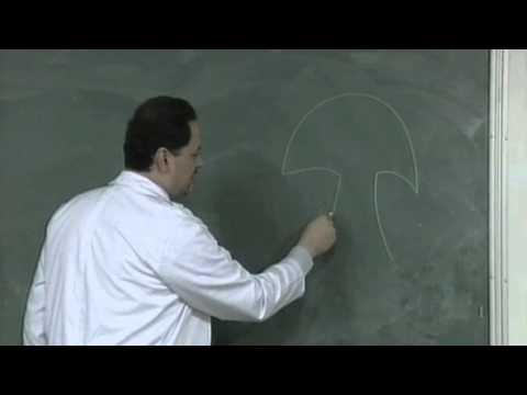 BLOSSOMS - Proper blackboard techniques
