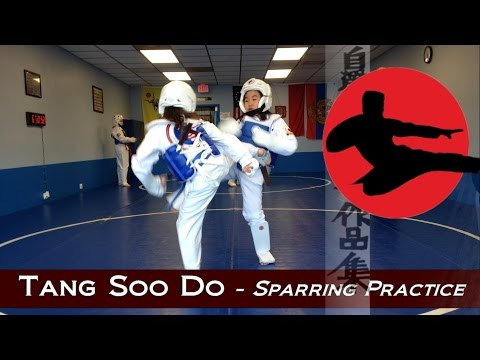 Tang Soo Do - Martial Arts Sparring Practice