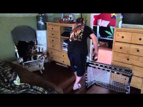 How to kill a house centipede