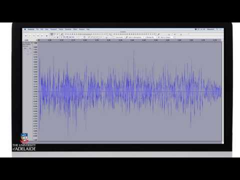 Distortion Using Audacity