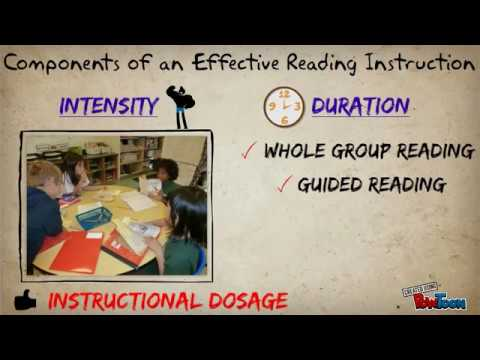 Literacy Strategies for English Language Learners