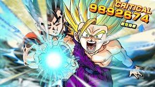 10 MILLION DAMAGE!? ULTRA OVERPOWERED Half Saiyan LR Team!!   Dragon Ball Z Dokkan Battle