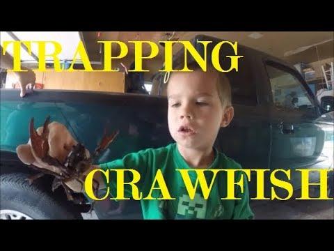 Catching Crawfish in Oregon