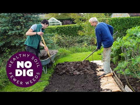 No dig, two ways to clear weeds