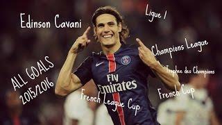 Edinson Cavani ● All 24 Goals ● 2015/2016 ● Ligue 1 ● All Cups