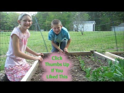 Raised Bed Vegetable Garden Update